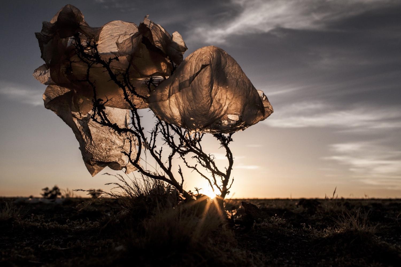 Eduardo Leal est un photographe documentaire portugais qui se concentre actuellement sur l'Asie du Sud-Est. Il a travaillé, auparavant, pendant plusieurs années en Amérique du Sud. Il est aujourd'hui basé à Macao, en Chine...  Lire la suite