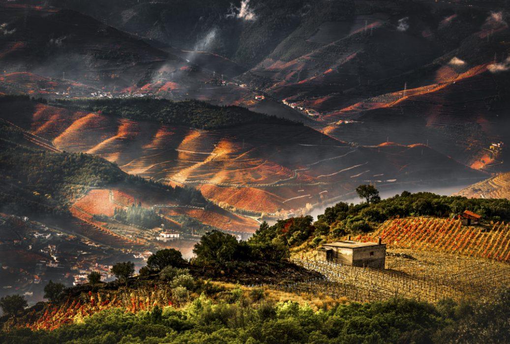 6. Rui Pires Douro