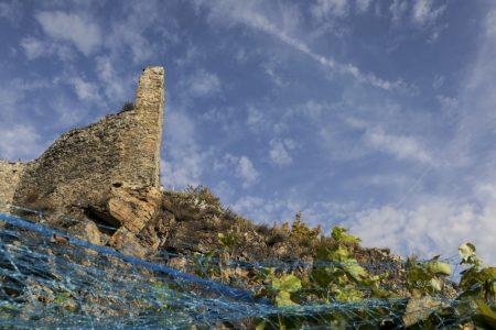12. pa bertholet Saillon Bâche 340x175